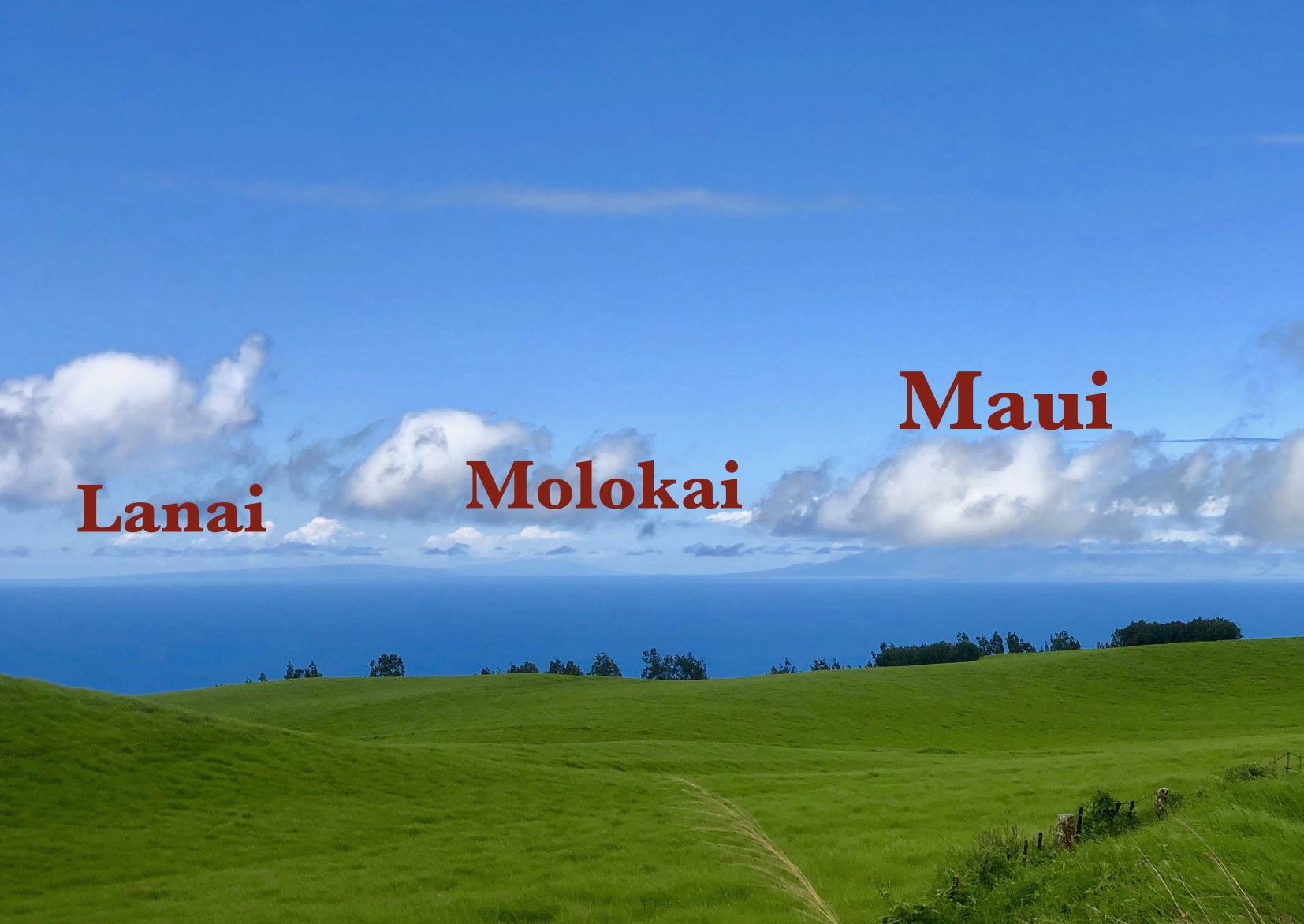 Hawaii vog forecast - clear!