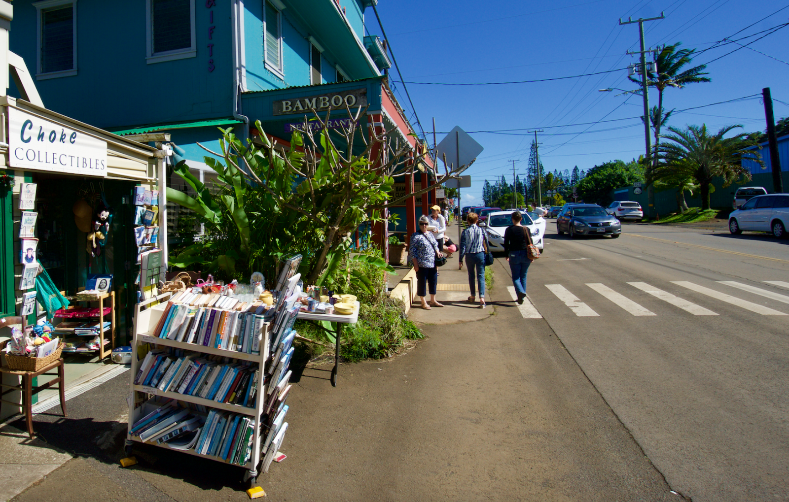 Shopping in Hawi, Big Island