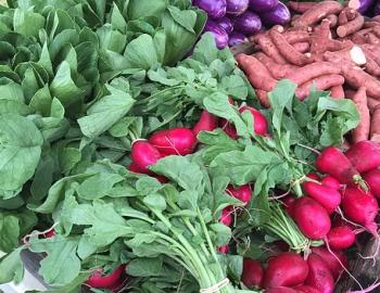 Waimea Homestead Farmers Market