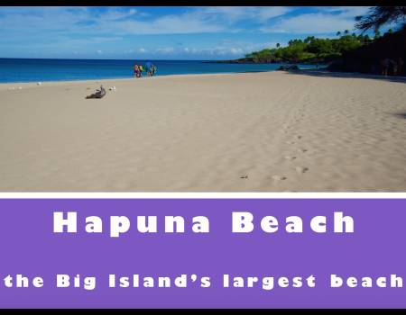 hapuna beach big island