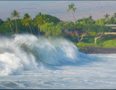 Hawaii Surf