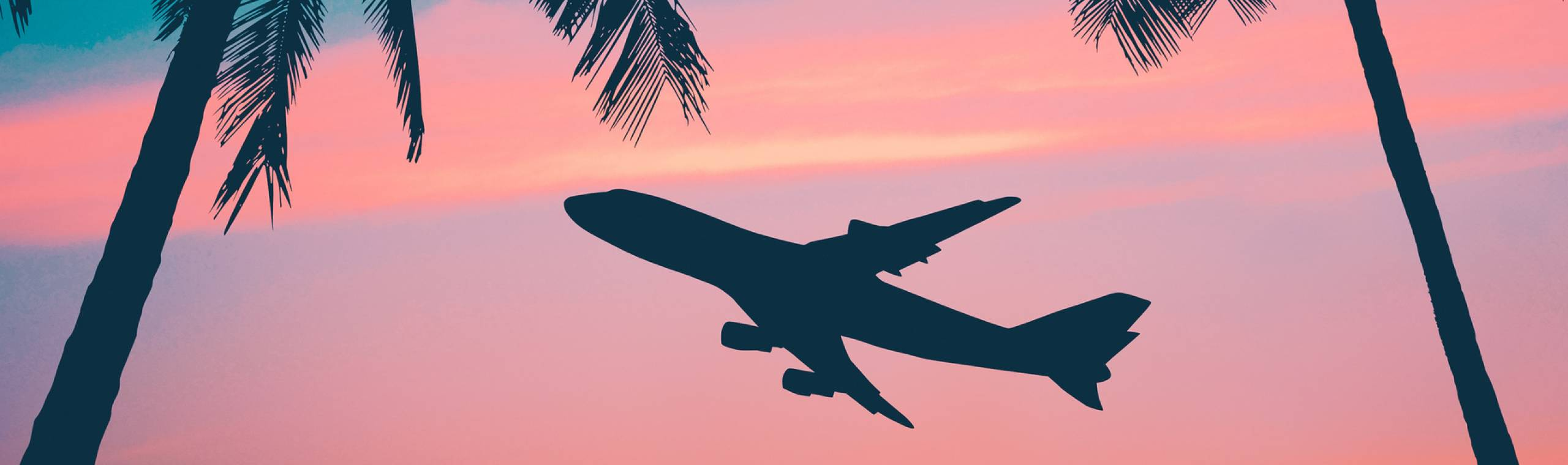 graphic of airplane sunset palm trees hawaii