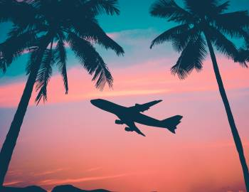 full graphic of airplane sunset palm trees hawaii